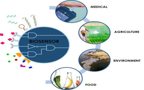 Check out the Different kinds of Sensors